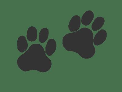 Tiger Footprint Image